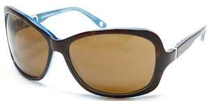Alexander Daas Majesty Dark Tortoise/Blue with Brown Lenses